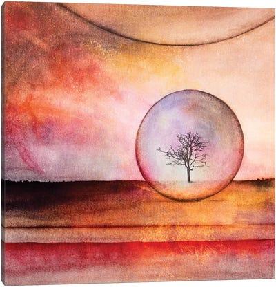 Lone Tree IV Canvas Art Print