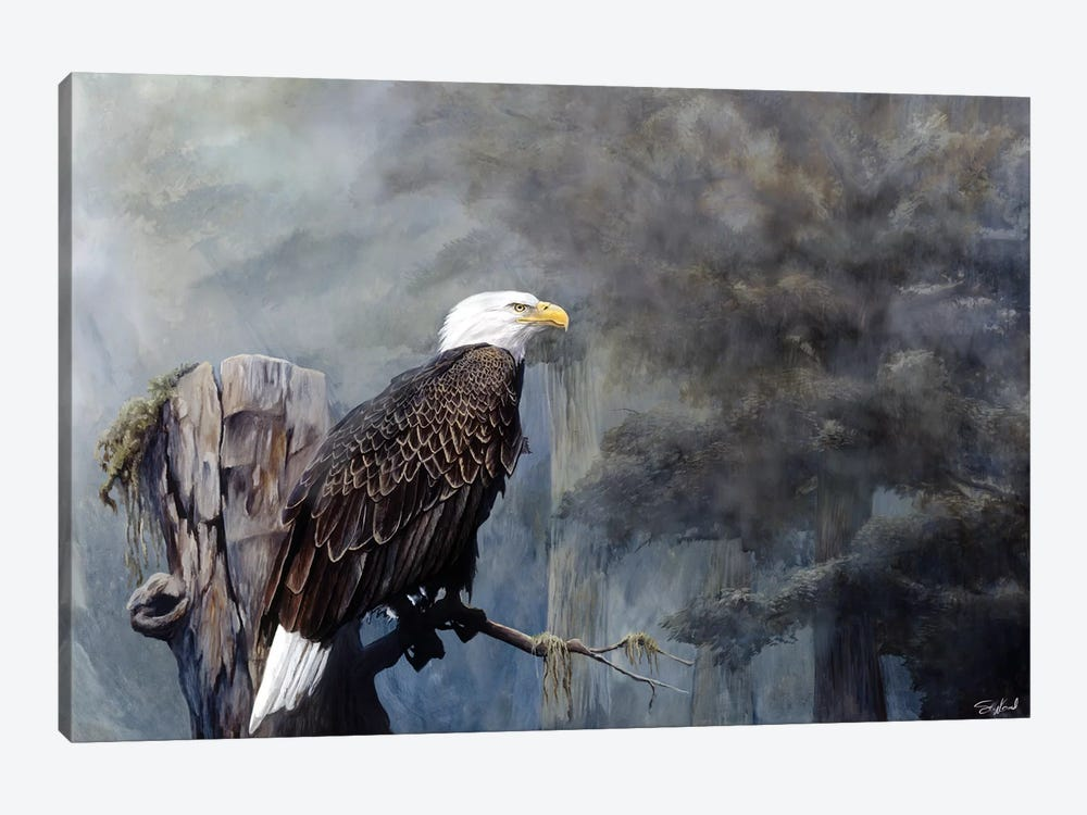 Freedom Haze by Steve Goad 1-piece Canvas Wall Art