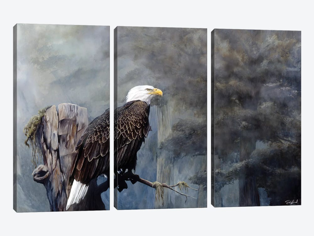 Freedom Haze by Steve Goad 3-piece Canvas Wall Art