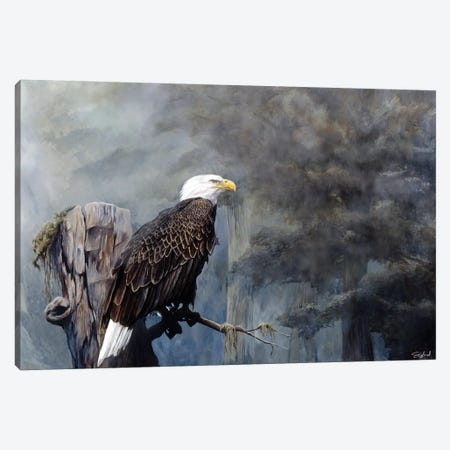 Freedom Haze Canvas Print #GOA14} by Steve Goad Canvas Art