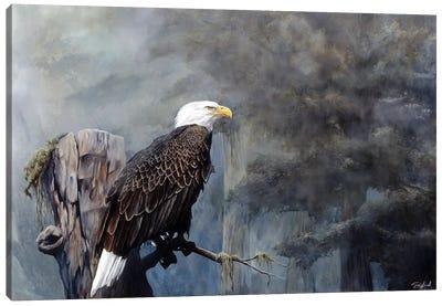 Freedom Haze Canvas Art Print