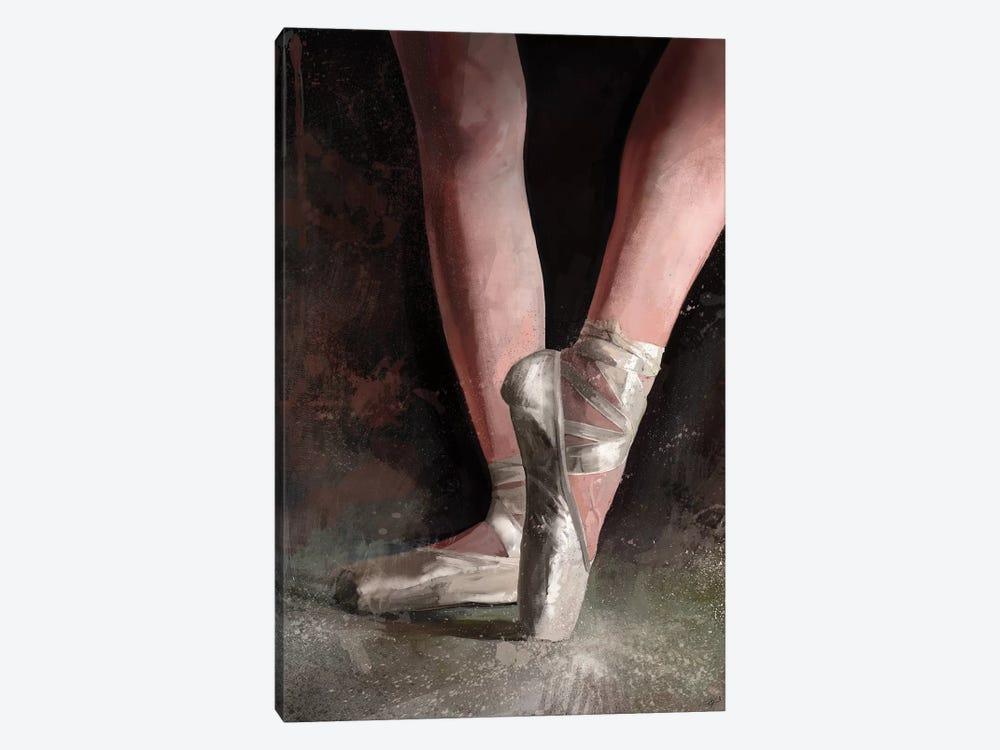 Graceful Slippers by Steve Goad 1-piece Art Print
