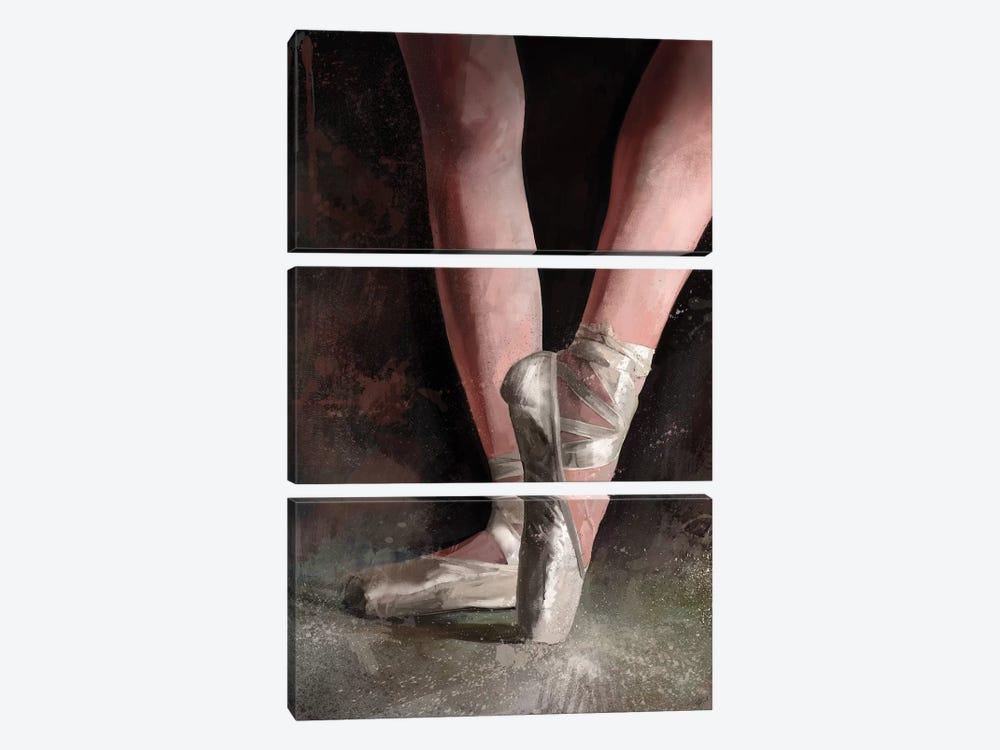 Graceful Slippers by Steve Goad 3-piece Art Print