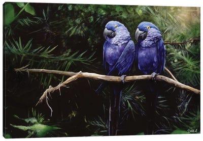 Twins Canvas Print #GOA33
