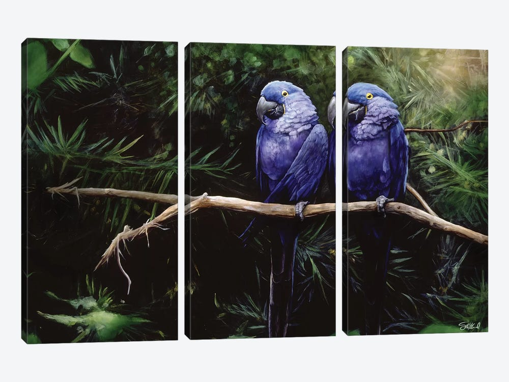 Twins by Steve Goad 3-piece Canvas Art Print