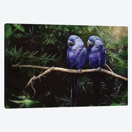 Twins Canvas Print #GOA33} by Steve Goad Art Print