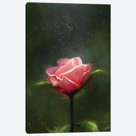 Subtle Beauty Canvas Print #GOA47} by Steve Goad Art Print