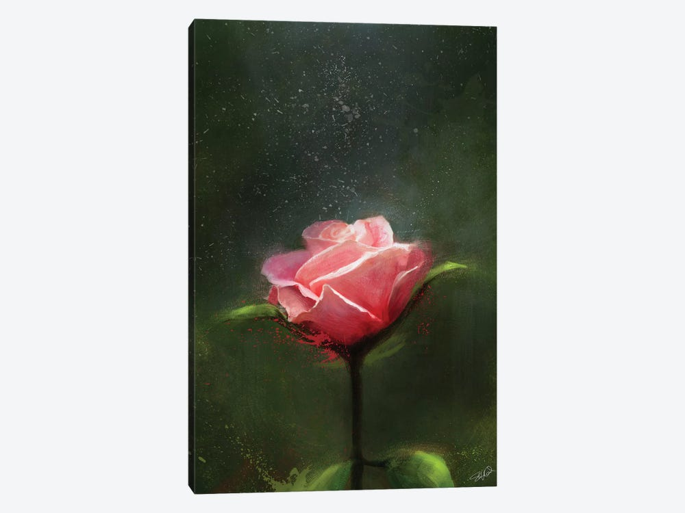 Subtle Beauty by Steve Goad 1-piece Canvas Artwork