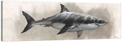 Great White Shark Drawing Canvas Art Print