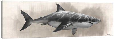 Great White Shark Drawing Canvas Art Print