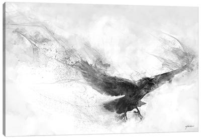 Raven's Flight Canvas Art Print