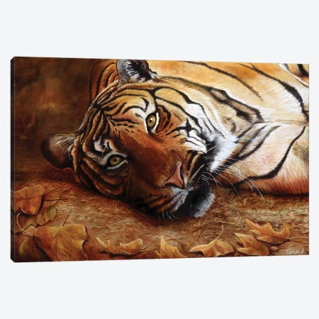 Bengal Tiger Canvas Print #GOA5} by Steve Goad Art Print