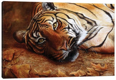 Bengal Tiger Canvas Art Print