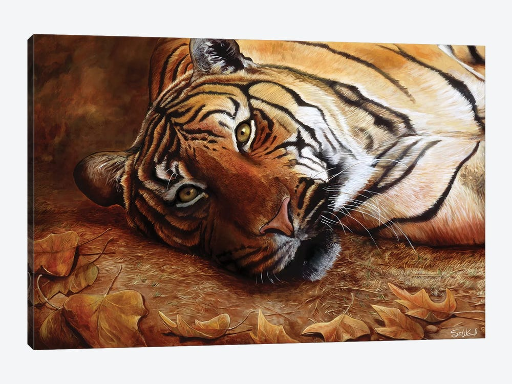 Bengal Tiger by Steve Goad 1-piece Canvas Art Print