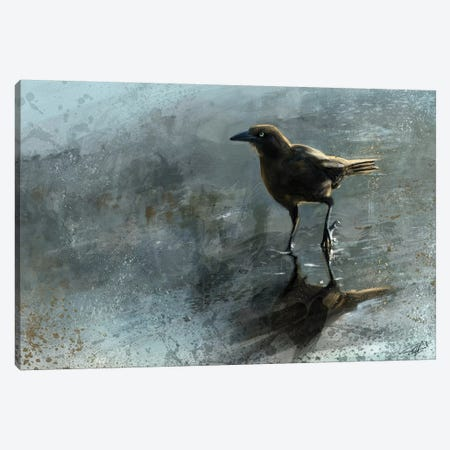 Bird In A Puddle Canvas Print #GOA6} by Steve Goad Canvas Art Print
