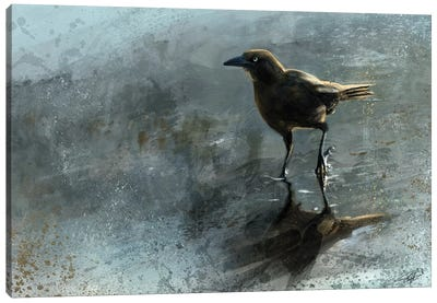 Bird In A Puddle Canvas Art Print