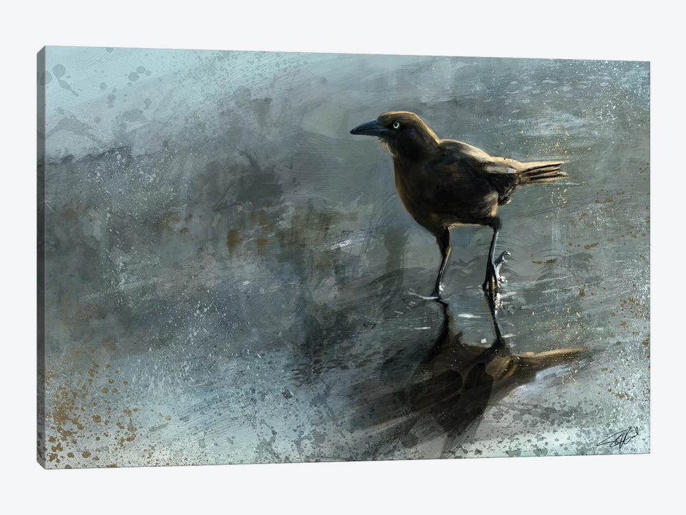 Bird In A Puddle by Steve Goad 1-piece Canvas Art