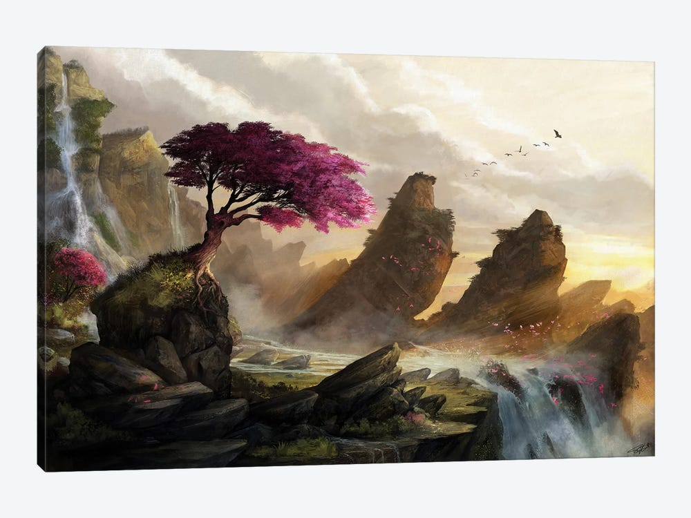 Blossom Sunset by Steve Goad 1-piece Canvas Art Print