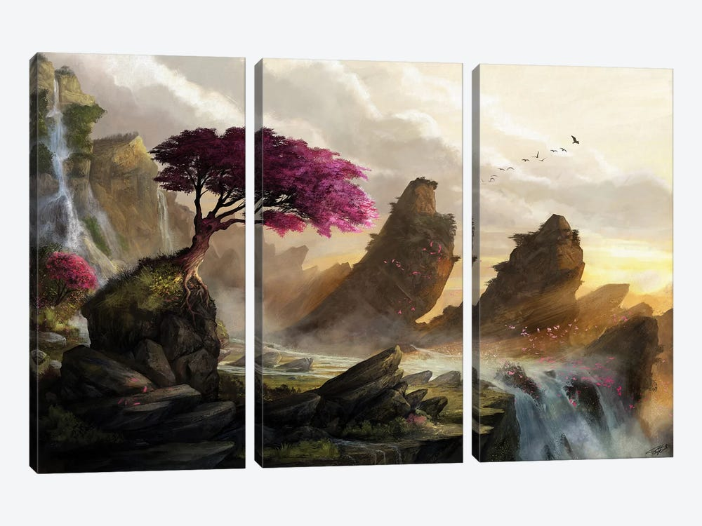 Blossom Sunset by Steve Goad 3-piece Canvas Print