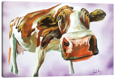 Brown & White Cow Canvas Art Print
