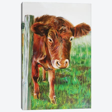 Brown Cow Canvas Print #GOB1} by Gordon Bruce Canvas Art Print