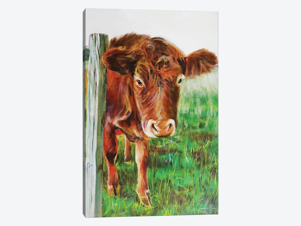 Brown Cow by Gordon Bruce 1-piece Canvas Artwork