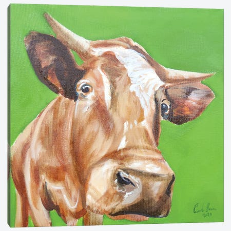 Close Up Cow Canvas Print #GOB22} by Gordon Bruce Art Print