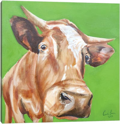 Close Up Cow Canvas Art Print
