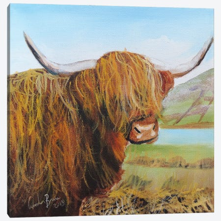 Highland Cow Canvas Print #GOB36} by Gordon Bruce Canvas Print