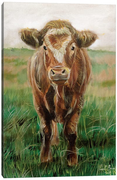 Portrait Of A Cow Canvas Art Print