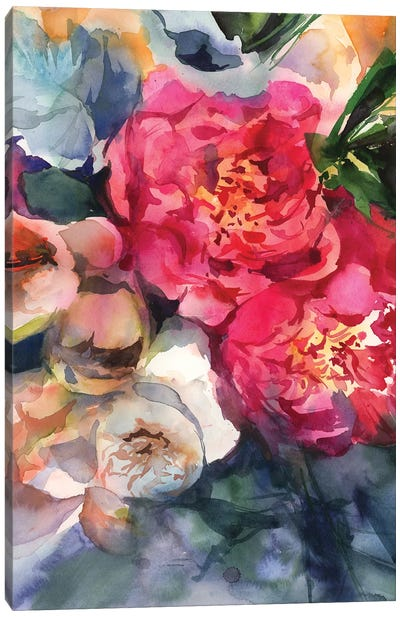 Belle Peonie Canvas Art Print