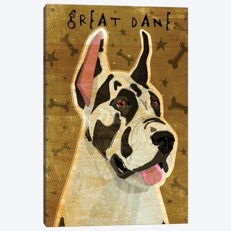 Great Dane - Harlequin  Canvas Print #GOL116} by John Golden Art Print