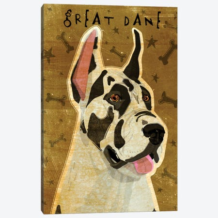 Great Dane - Harlequin  Canvas Print #GOL116} by John Golden Art Print