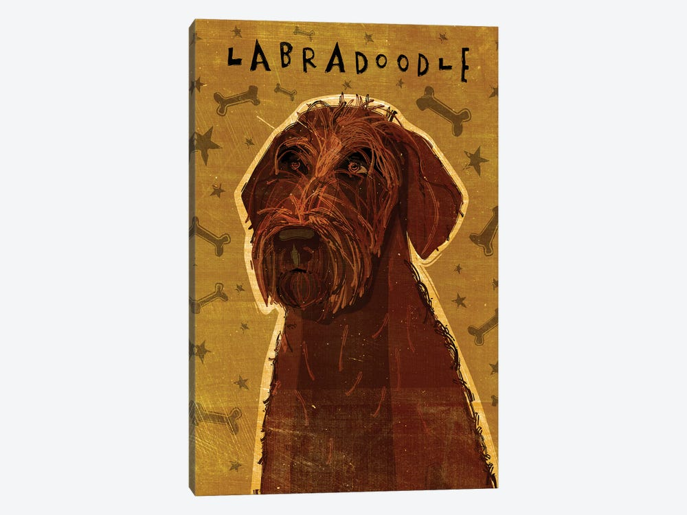 Labradoodle - Chocolate by John Golden 1-piece Canvas Wall Art