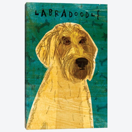 Labradoodle - Yellow Canvas Print #GOL140} by John Golden Canvas Print