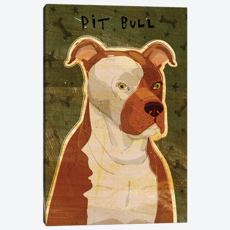 Pit Bull Canvas Print #GOL200} by John Golden Canvas Artwork