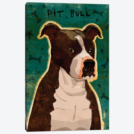 Pit Bull - Brindle Canvas Print #GOL201} by John Golden Canvas Wall Art