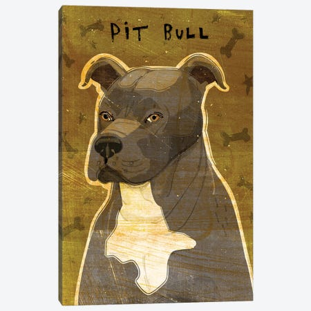 Pit Bull - Gray Canvas Print #GOL202} by John Golden Canvas Art