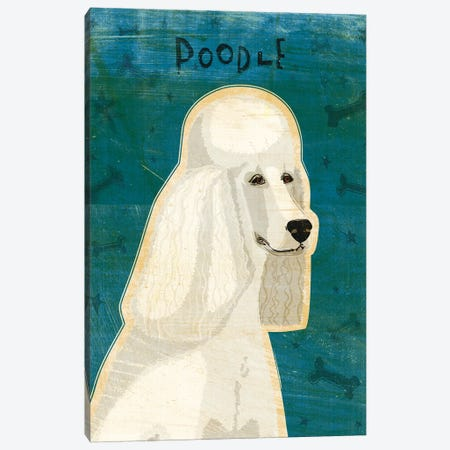 Poodle - White Canvas Print #GOL209} by John Golden Canvas Artwork