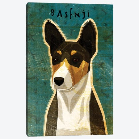 Basenji - Tri-Color Canvas Print #GOL21} by John Golden Canvas Print
