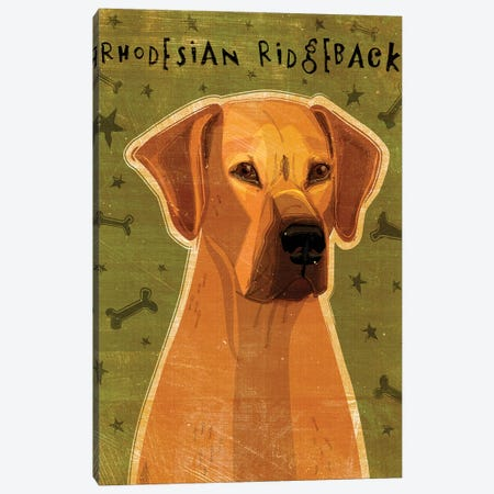 Rhodesian Ridgeback Canvas Print #GOL226} by John Golden Art Print