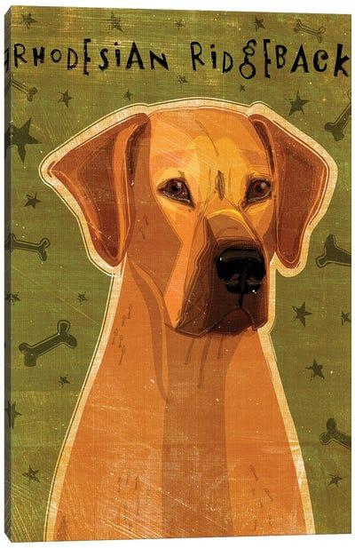 Rhodesian Ridgeback Canvas Art Print