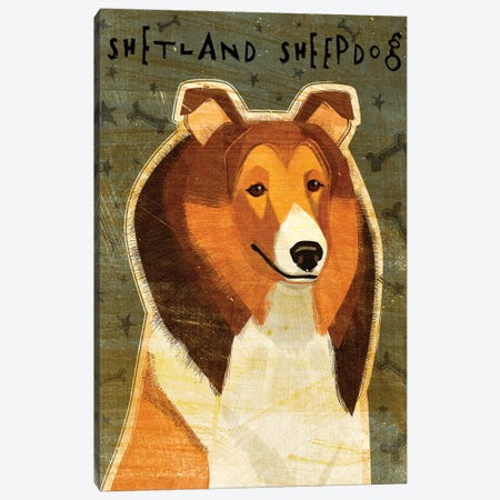 Shetland Sheepdog Canvas Print #GOL243} by John Golden Canvas Wall Art