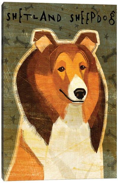 Shetland Sheepdog Canvas Art Print
