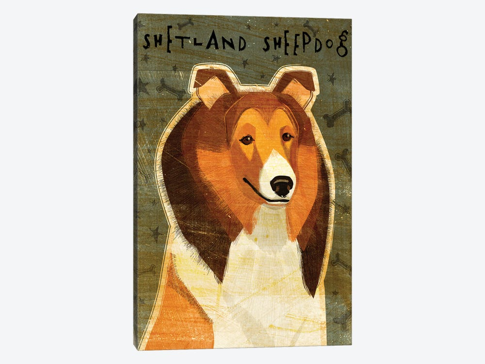Shetland Sheepdog by John Golden 1-piece Canvas Art Print