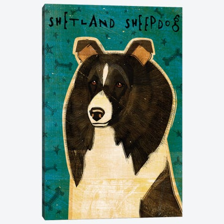 Shetland Sheepdog - Black & White Canvas Print #GOL244} by John Golden Art Print