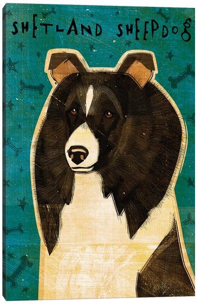 Shetland Sheepdog - Black & White Canvas Art Print