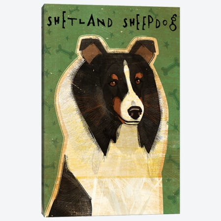 Shetland Sheepdog - Tri-Color Canvas Print #GOL245} by John Golden Canvas Art Print