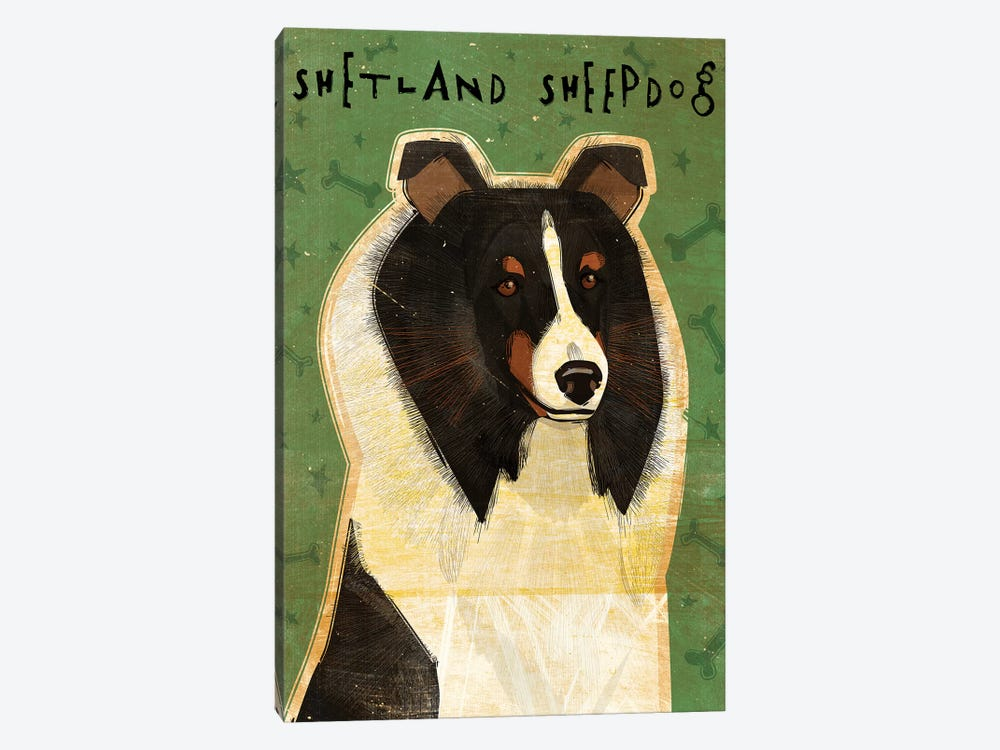 Shetland Sheepdog - Tri-Color by John Golden 1-piece Canvas Art Print