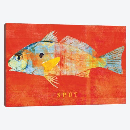 Spot Canvas Print #GOL257} by John Golden Canvas Artwork
